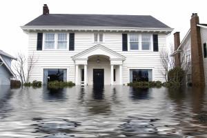 FloodedWhiteHouse